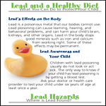brochure_lead_and_healthy_diet
